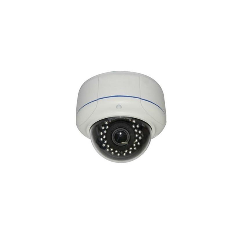 Udendørs IP PoE Domekamera 1,3MP IR, Eco Line