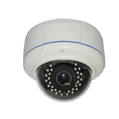 Udendørs IP PoE dome kamera 1,3MP IR, Eco Line